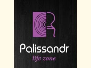 polisandr-logo